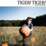 TIGER! TIGER!7
