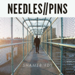 NEEDLES::PINS